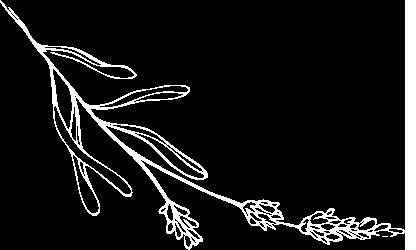 Banner leaf left